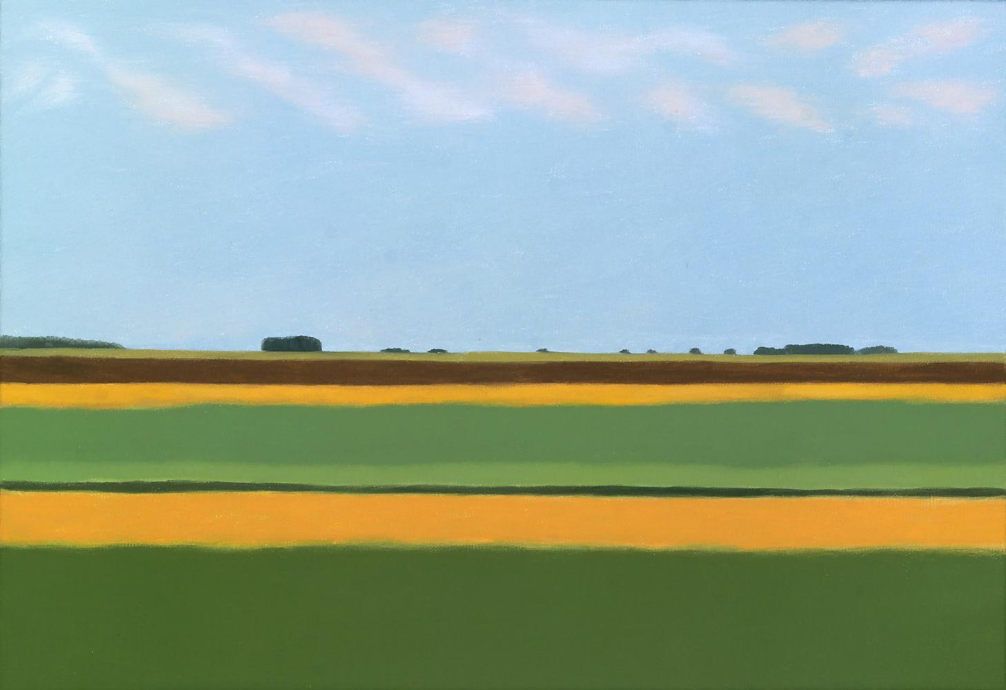 Campos de Uruguay I, 38 x 55 cm, óleo lienzo, 2015.